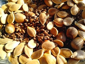 various-seeds-pumpkin-nuts-seeds-apple-grains-725x544