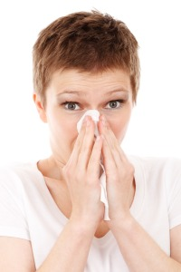allergy-cold-disease-flu-41284